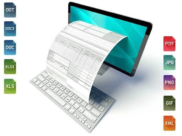 Custom Invoices accepts different file formats